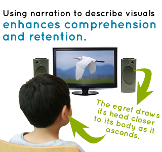 Using narration to describe visuals enhances comprehension and retention.